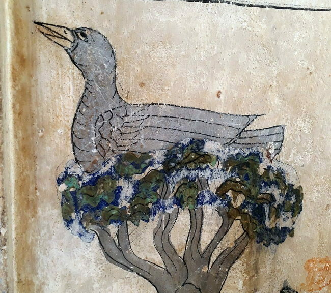 นก วัดยางทวง