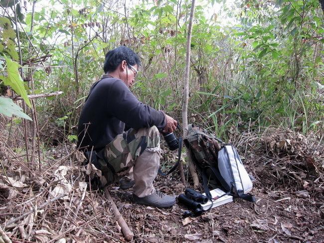 เขตรักษาพันธุ์สัตว์ป่า ภูเขียว ทุ่งกะมัง ชัยภูมิ อีสาน เที่ยว